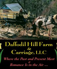 Daffodil Hill Farm & Carriage – Romantic Luxury Carriage House